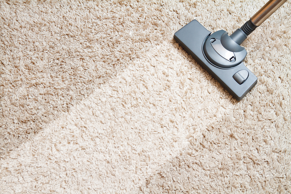 top rated carpet cleaning technician removing pet stains from home in maricopa county az