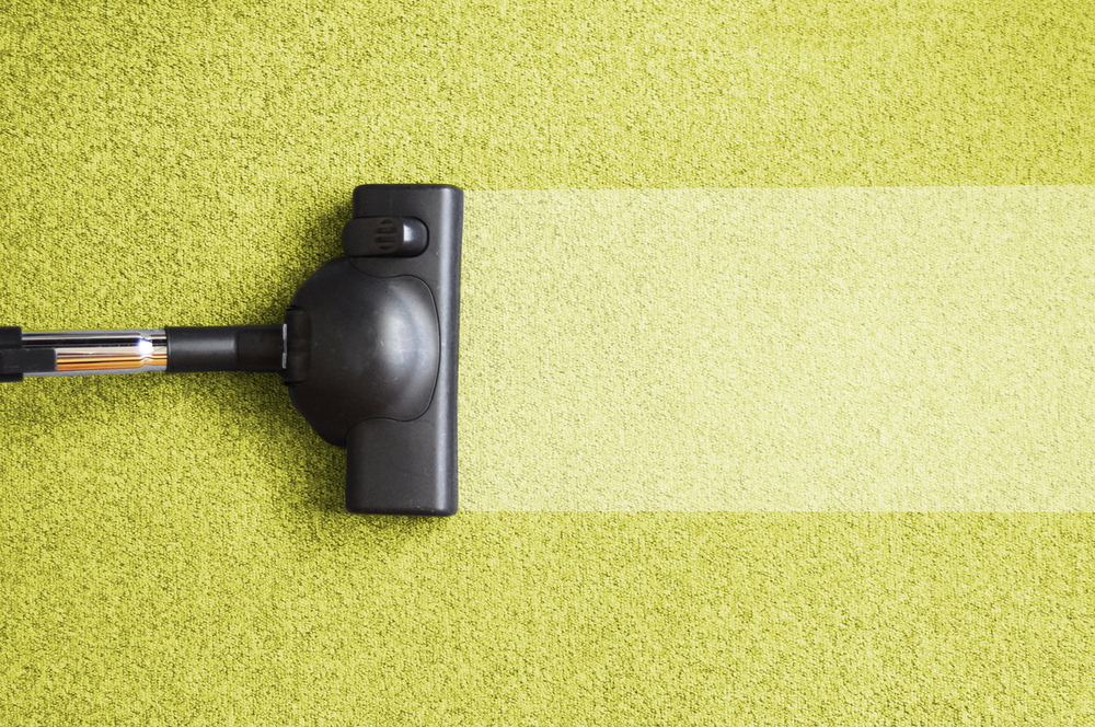 top rated carpet cleaning company servicing home in phoenix az